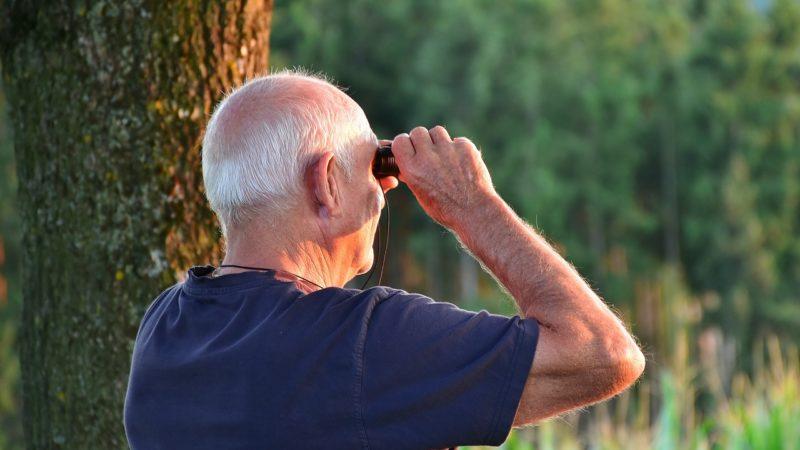 Quels sont les loisirs préférés des seniors ?